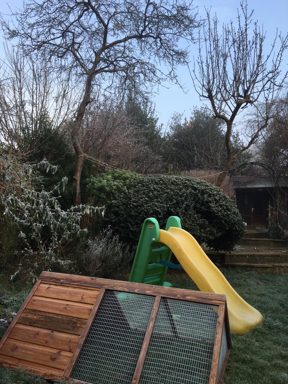 winter-garden-2017-4